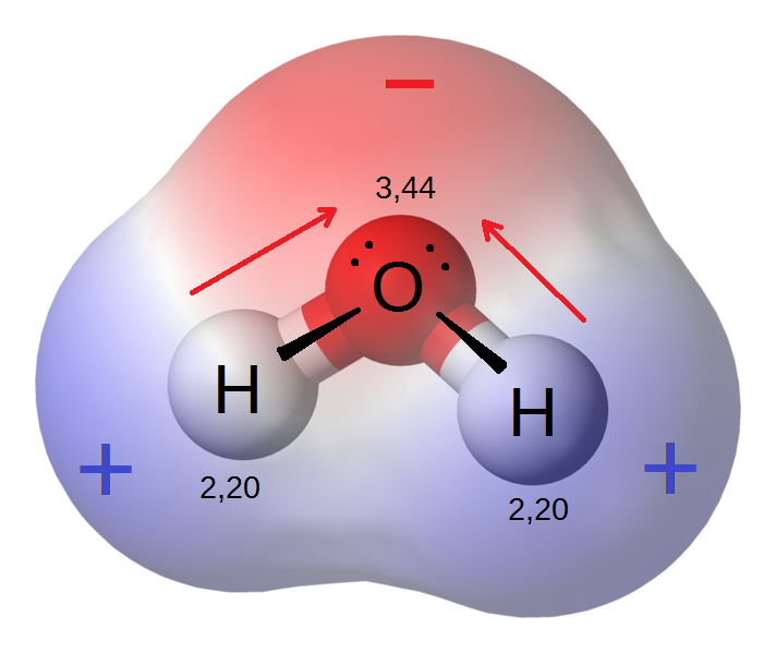 Polar water molecule